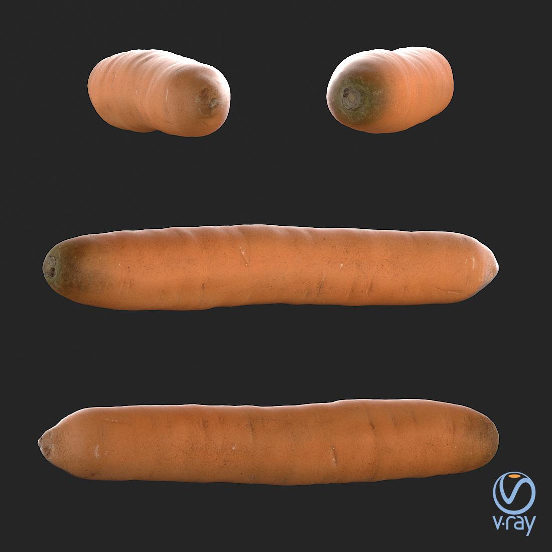 Łukasz Liszko - 3D scans / photogrammetry - Carrot 02